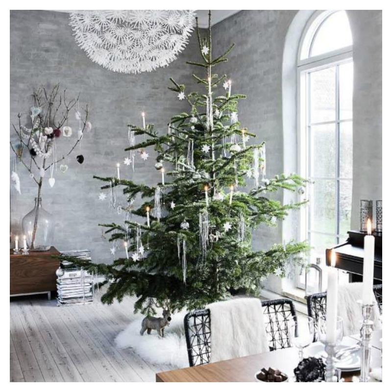 blog1b_christmas tree